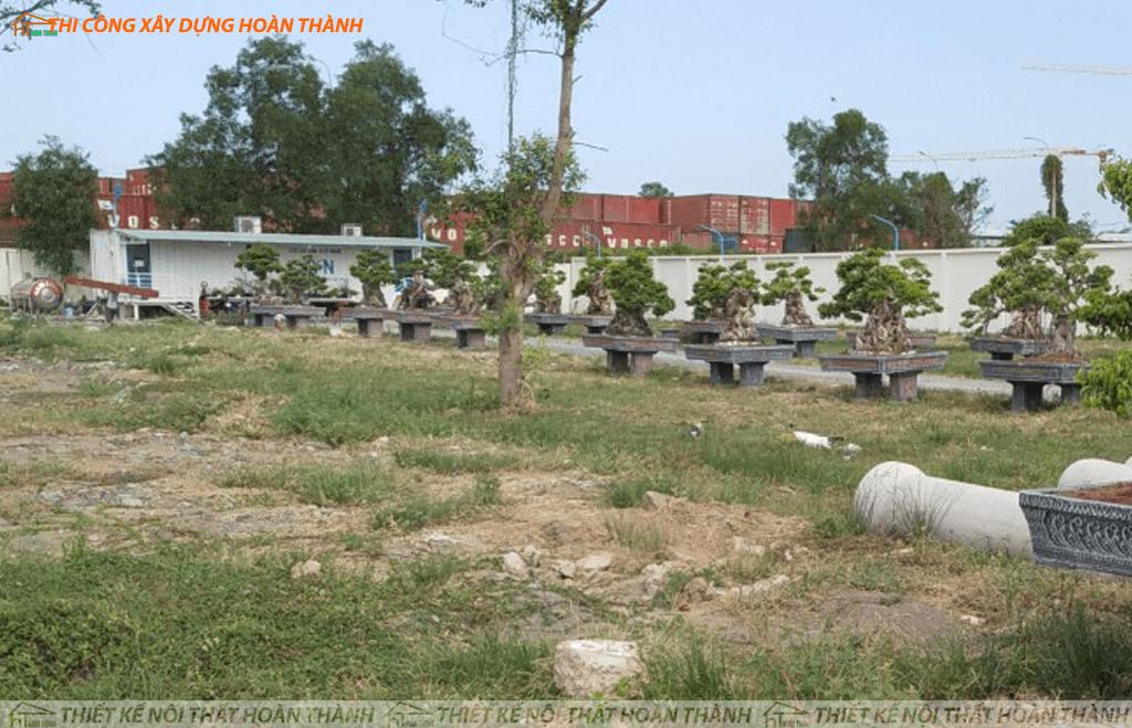 Dự án Venica Garden quận 7
